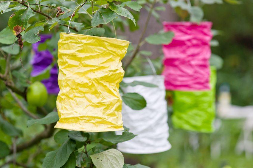 Zu einem gelungenen Gartenfest gehört natürlich die richtige Dekoration. (Bild: Claudia Paulussen / Fotolia.com)