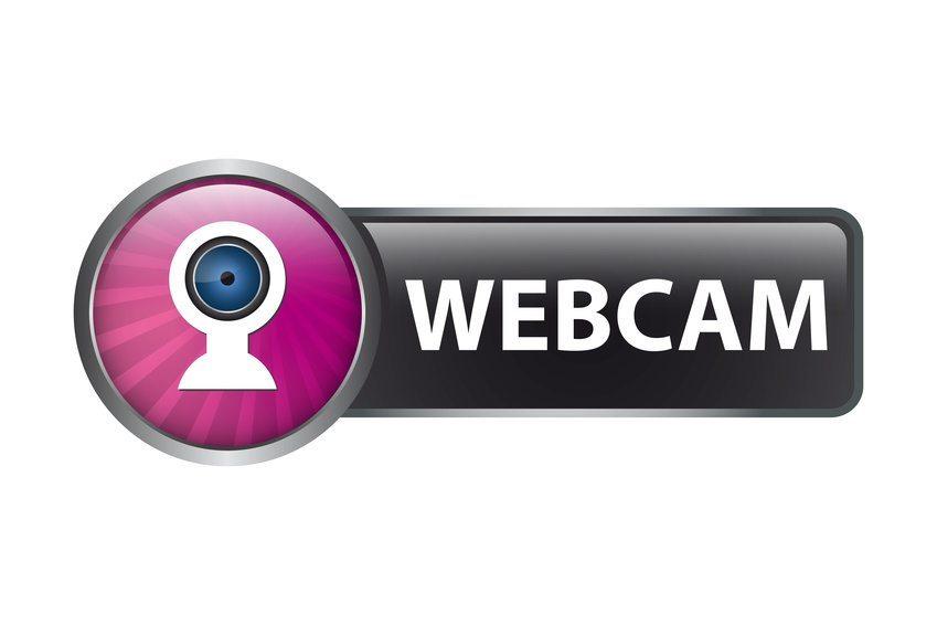 Als Veranstalter eines Webinars benötigen Sie eine Webkonferenz-Software, mit der Sie Ihre Inhalte ins Netz bringen. (Bild: cirquedesprit / Fotolia.com)