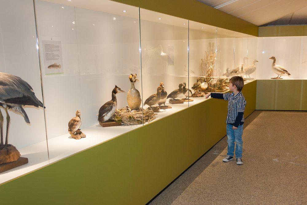 Kinder und Jugendliche erfassen das im Museum Gezeigte am besten, wenn es im eigenen Handeln nachvollzogen werden kann. (Bild: Semmick Photo / Shutterstock.com)