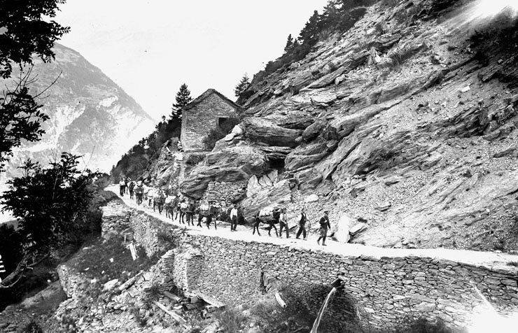 Die Maultierkolonne auf dem Saumpfad, Datum 1914-1918 (Bild: DE: Schweizerisches Bundesarchiv, CH-BAR#E27#1000/721#14095#3713* / CC-BY-SA 3.0/CH, Wikimedia)
