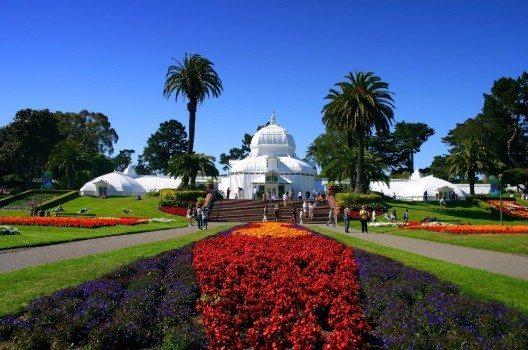 Der Golden Gate Park in San Francisco mit seinen immer wechselnden Blumen ist einer der schönsten Treffpunkte der Stadt.