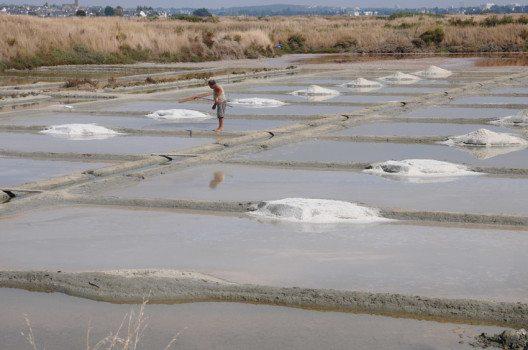 Salzgärten sind eine der sehenswertesten Attraktionen in Guérande. (Bild: Pack-Shot – shutterstock.com)