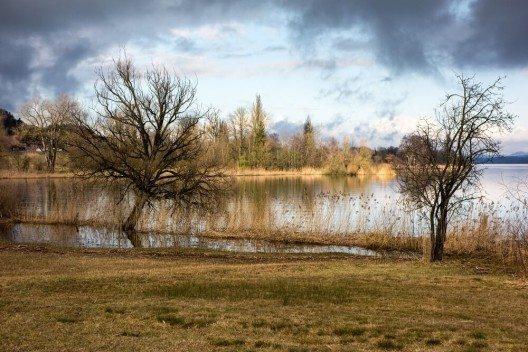 Im Frühling und Sommer nutzen viele Zugvögel das Naturschutzgebiet am Greifensee für eine Rast. (Bild: © heikof - fotolia.com)