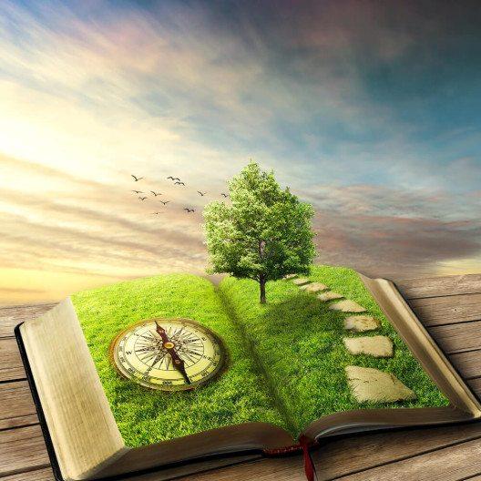 Geschichten entführen ins Reich der Fantasie. (Bild: © PathDoc - shutterstock.com)