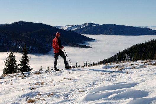 Neben zahlreichen Winterwanderrouten führt auch der 4-Seasons-Trail die Geocacher durch den Nördlichen Schwarzwald. (Bild: Baciu – Shutterstock.com)