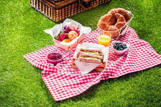 Das wichtigste Accessoire ist die Picknickdecke. (Bild: stockcreations – Shutterstock.com)
