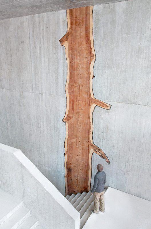 Séquoia (Bild: © André Schlaepfer /Prix Lignum 2015)